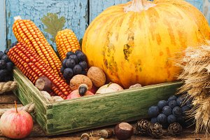 Pumpkin and different ripe vegetables and fruits