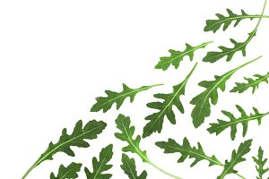 Green fresh rucola or arugula leaf isolated on white background with copy space for your text. . Top view