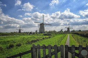 Typical Dutch windmills