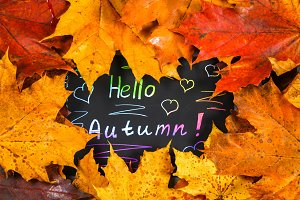A frame of yellow and orange autumn maple leaves on gray dark concrete. Black plate with colored text. The inscription is hello autumn.