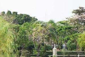 Lawn set in the garden.
