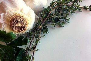 Garlic and Herbs Stock Photo