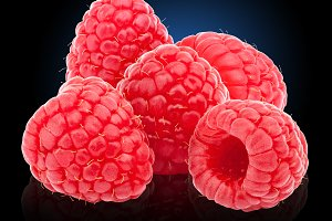 Five ripe raspberries isolated on blue to black