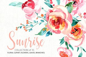 Watercolor floral set peony, roses