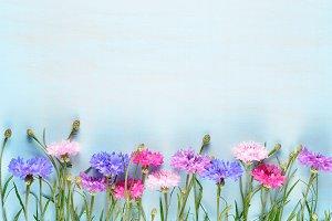 Cornflowers on blue wood