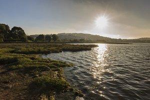 El Burgo stuary.