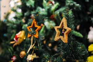 Christmas decoration stars on the top of Christmas tree with copy space