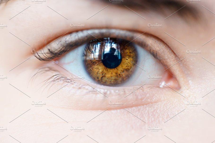Female Brown Eyes People Photos Creative Market
