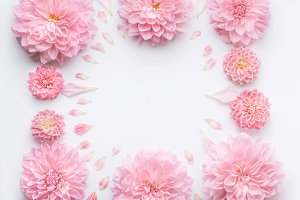 Frame of pink pale flowers , layout