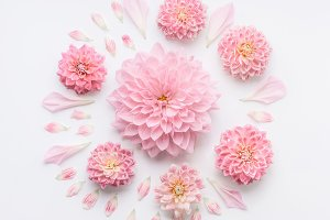 Round pink pale flowers composition