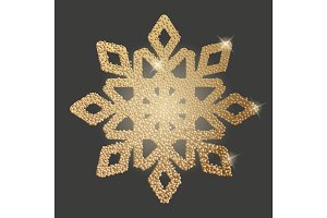 Beautiful snowflake icon
