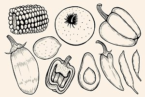 Monochrome vintage engraving organic vegetables