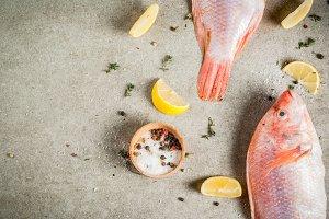 Fresh raw fish pink tilapia