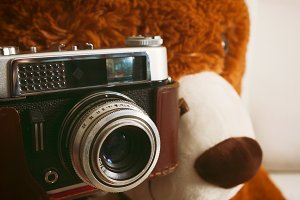 Big teddy bear with vintage 35mm cam
