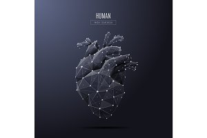 human heart low poly white