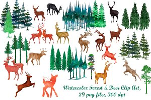 Watercolor Deer/Forest Clip Art