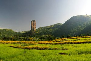 Agriculture landscape with gorst aka Finger of God and fields of teff in Ethiopia