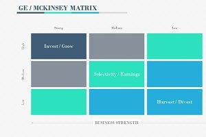 GE/MCKINSEY MATRIX PowerPoint