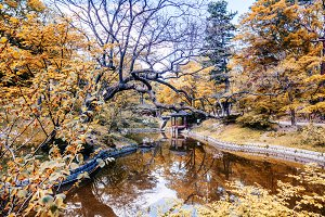 Park in Seoul