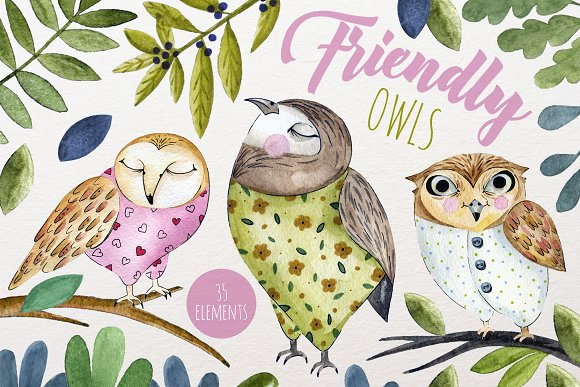 Friendly Owls-Graphicriver中文最全的素材分享平台