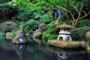 Peaceful Japanese waterfall garden