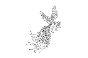 Simorgh or Simurgh Flying Drawing