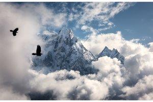 Flying birds against majestical Manaslu mountain with snowy peak