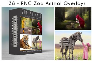 47 - PNG - ZOO ANIMALS