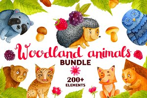 Woodland Animals. Watercolor Bundle