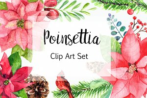 Watercolor Poinsettia Clip Art Set