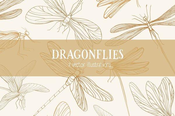 Set of 7 various dragonflies