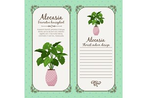 Vintage label with alocasia plant