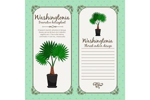 Vintage label with washingtonia plant