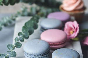 Pastel macarons and flowers on marble