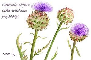 Watercolor Globe Artichoke Flower