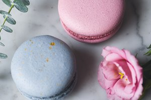 Pastel macaroons or macarons and flowers on marble