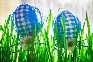 Decorative blue easter eggs in green grass on city background.