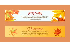 Autumn Banners set with Maple Foliage Vector
