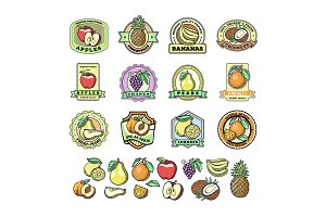 Fruit badge templates labels with sample text groceries agriculture stores packaging food advertising vector illustration.
