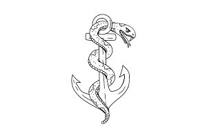 Rattlesnake Coiling on Anchor Drawin