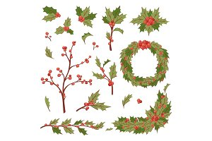 Christmas holly berry decoration vector leaves tree set, Xmas traditional symbol leaf icon branch illustration