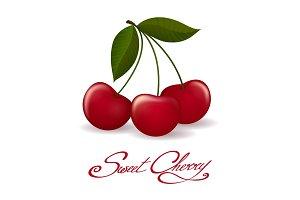 Cherry berries isolated icon