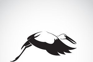 Vector of stork flying. Bird.