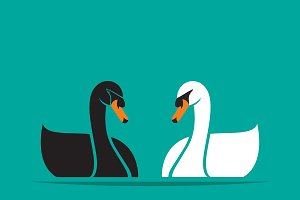 Vector of black swan and white swan.