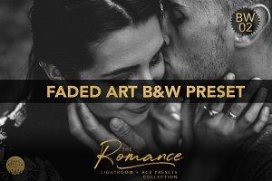 Faded Art B&W Preset Lightroom ACR