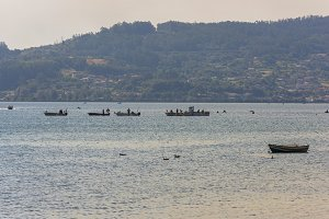 Galician fishers sellfishing.
