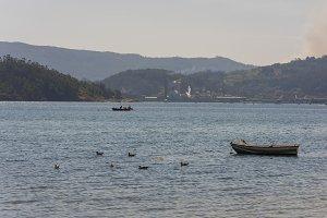 Galician fishers sellfishing.