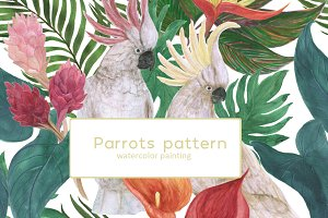 Watercolor parrots patterns