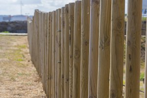 Wooden poles in a row.