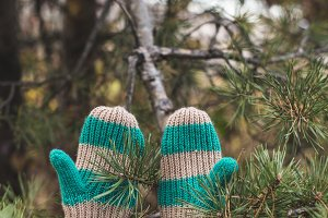 Winter gloves and fir
